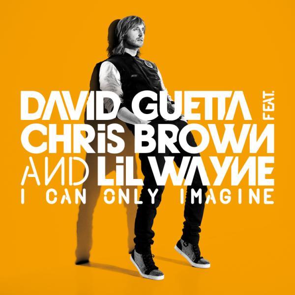 Ultratop. Be david guetta feat. Chris brown & lil wayne i can.