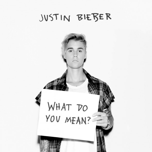 tn-justinbieber-whatdoyoumean-cover1200x1200
