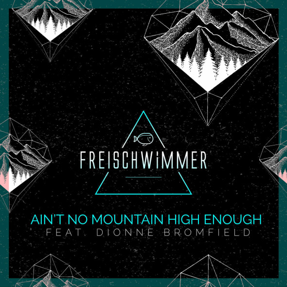 tn-reischwimmer-aintnomountainhighenough-cover1200x1200