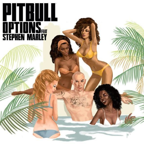 tn-Pitbull-Options-2017